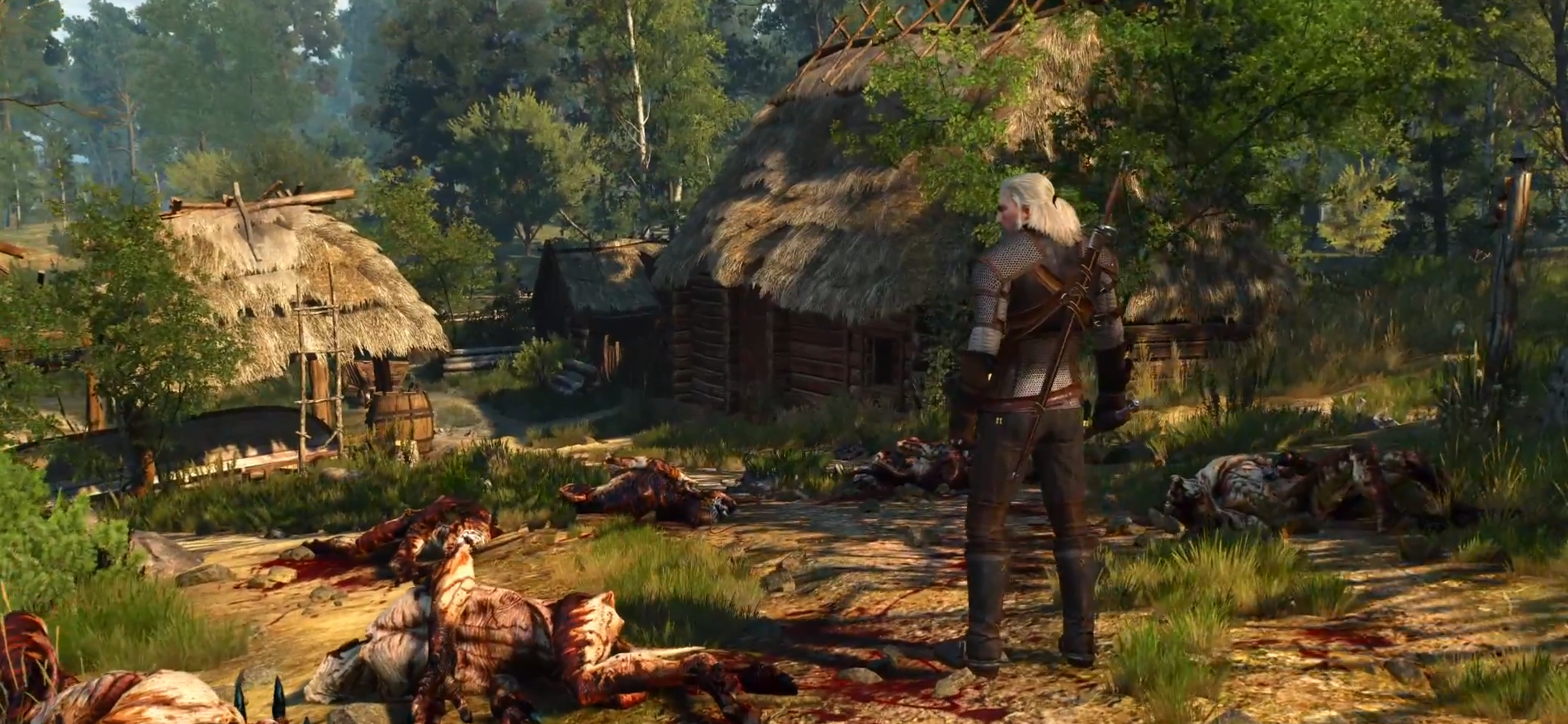 Photo of Beautiful World of the Witcher Trailer Released