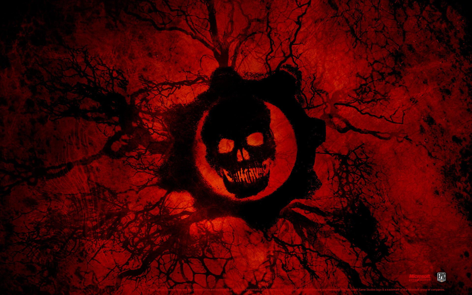 Photo of Next Gears of War Will Not Come to Xbox 360